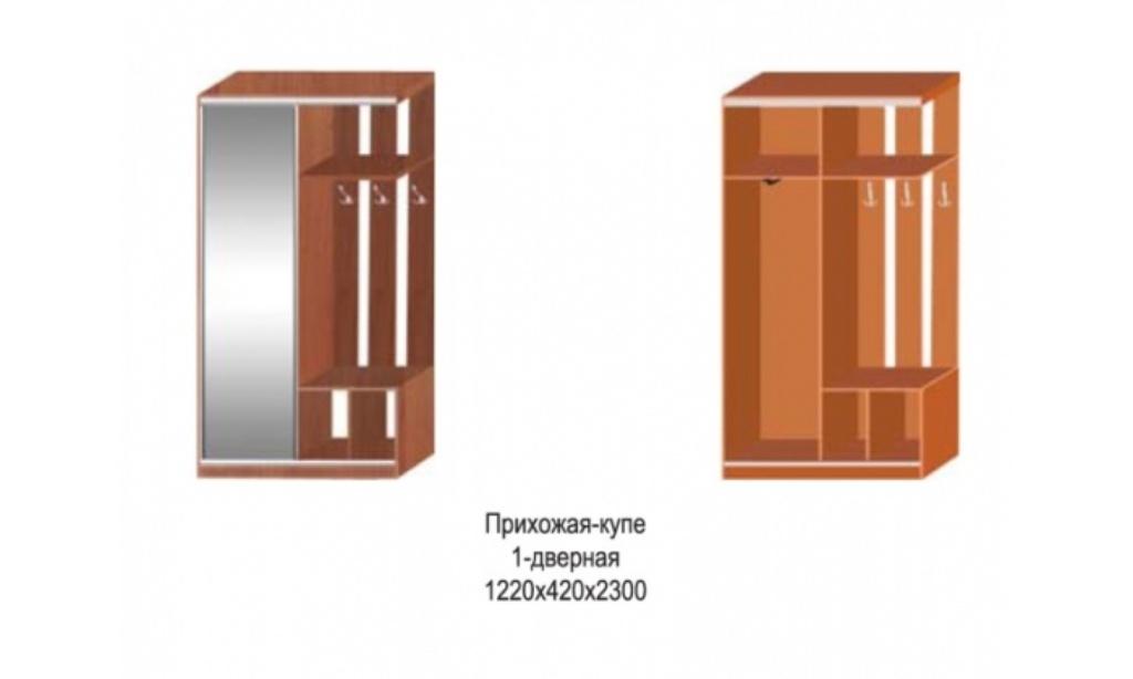 Мебель для прихожей - прихожая-купе 1-дверная.